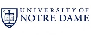 Cheap blog post editor websites for university