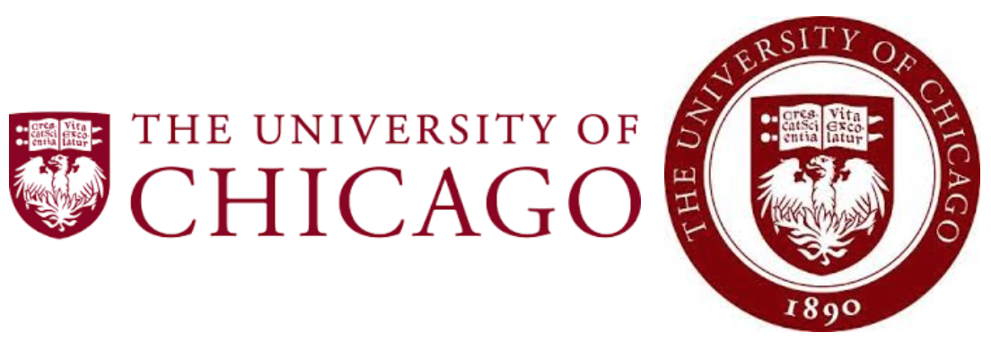 university of chicago essay questions